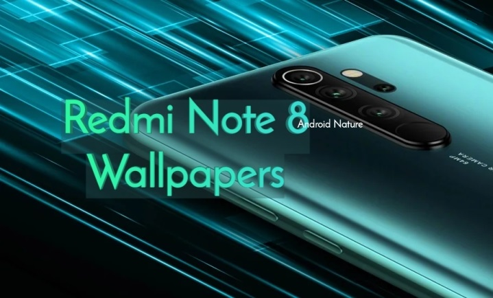 Download Redmi Note 8 Pro Stock Wallpaper Fhd Android Nature