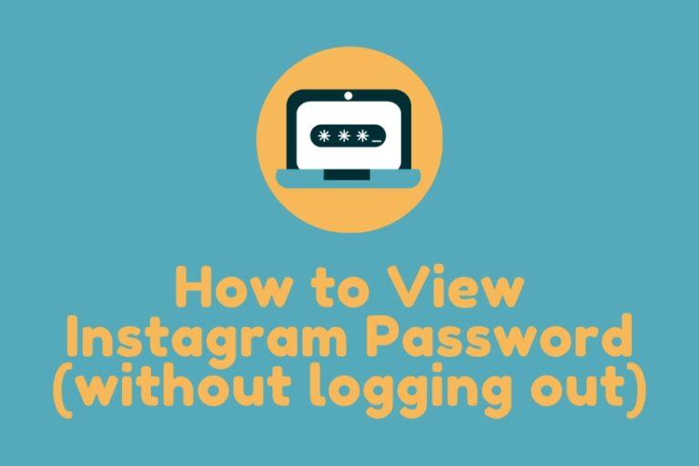 View Instagram Password